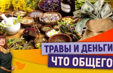 Травы и деньги: Что общего?