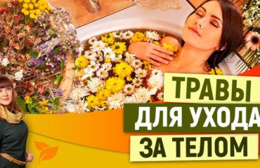Лекарственные травы для ухода за кожей