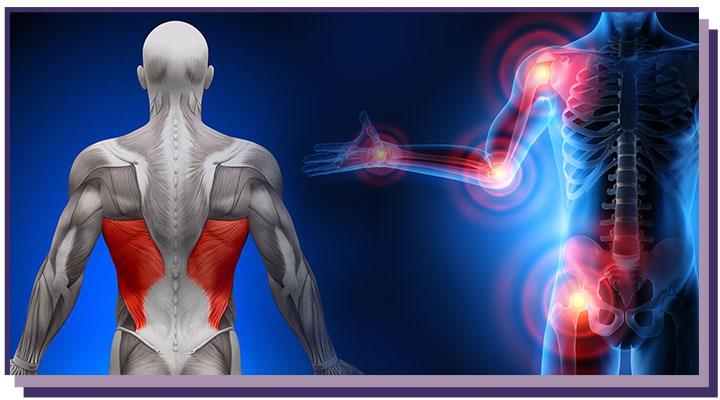 Myshtsy-spiny-i-sustavy Лечение позвоночника