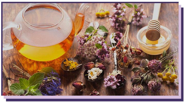 6-4 Очищение организма от шлаков, токсинов, паразитов