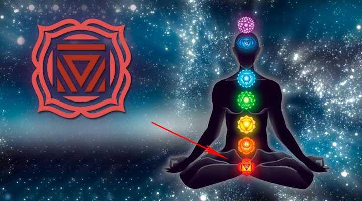 muladhara-chakra-gde-nahoditsya Муладхара чакра