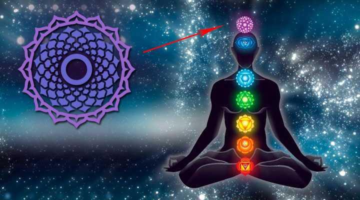 suhasrara-chakra-gde-nahoditsya Сухасрара чакра